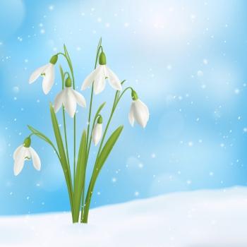 maly_kwiat